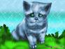 грустный котёнок