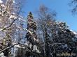 Красоты Ленинградской области