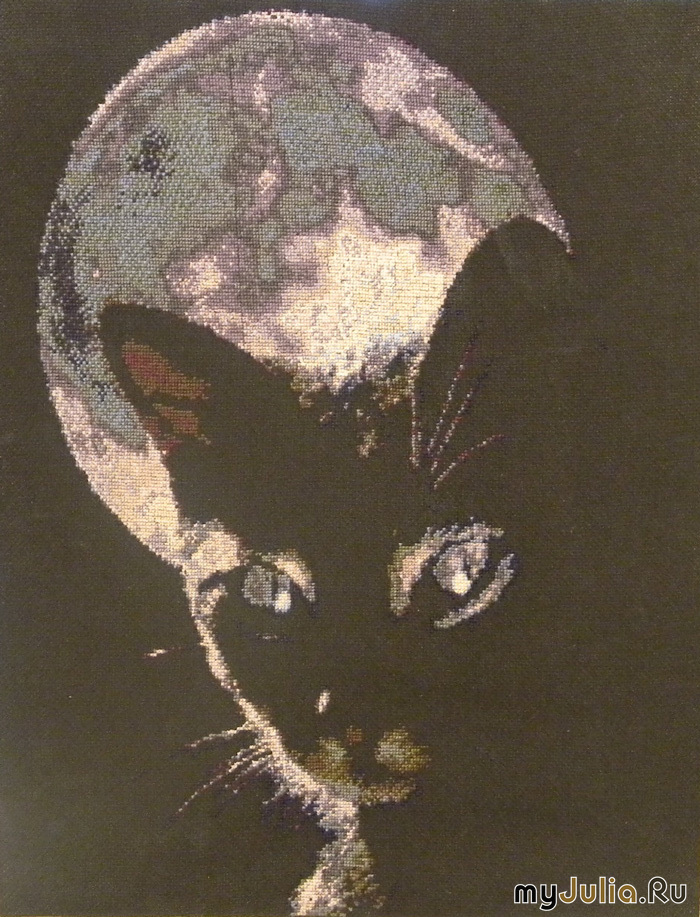 Вышивка крестиком на черной канве фото 83