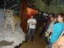 музей Лазовского заповедника