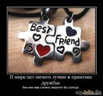 Дружба зарождается по-разному....