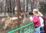 Алматинский зоопарк в марте.