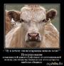 не игнорируй их когда они хотят отдать тебе свою жизнь... (вегетарианцев просьба не воспринимать этот дем всерьез)... (С) на дем