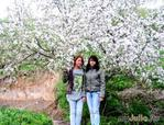 Весна в Алматы.