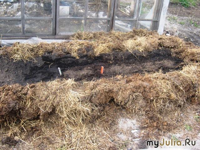 Как сделать теплые грядки для арбузов