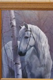 Белая лошадь во ржи