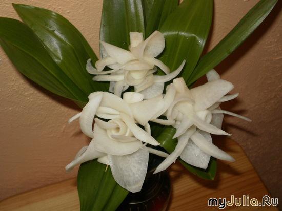 Орхидеи из дайкона