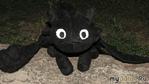 Черная фурия или просто Беззубик