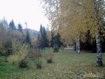 Осень в фотошопе