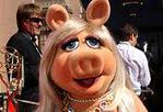 Эта пресловутая свинья