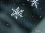 САХАЛИН.Снежный выходной