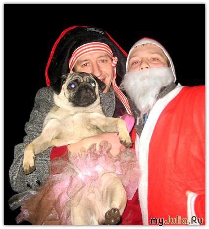 Мопс, пират и Дед Мороз