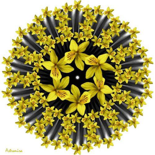 "Mandala ""Цветы"""
