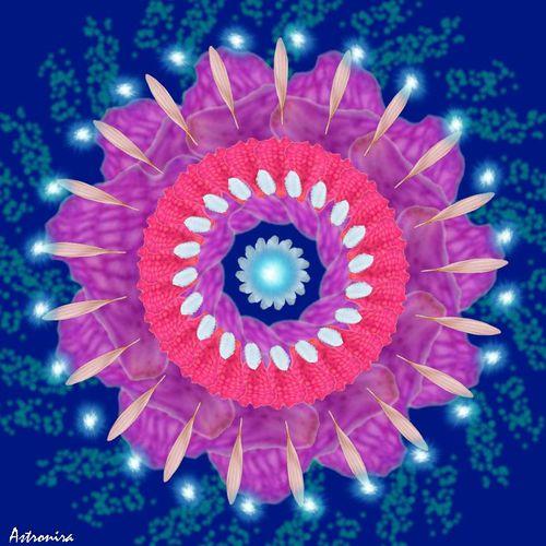 """Mandala """"Цветок любви"""""""