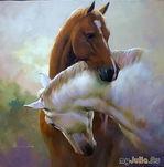 Красивые фото лошадей!!!