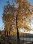Что такое осень...