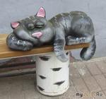 Ярославские котейки: шаг в вечность