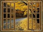 Осень, отражённая в моём окне