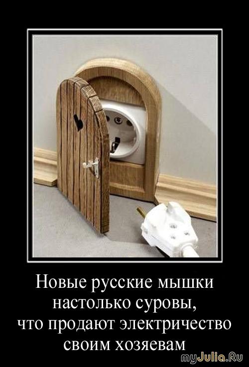 От Анатолия Чубайса сбежала мышь, поселилась в другой квартире, оккупировала все розетки в доме, и стала продавать жильцам доступ к электроэнергии по завышенным ценам