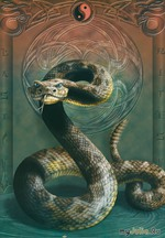 Прогноз на год Змеи