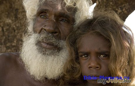 inequality to aboriginal people in australia essay These are the first of many aboriginal protests against inequality in western australia 1,000 aboriginal people sign the aboriginal rights essay.