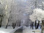 Зима не покидает город.