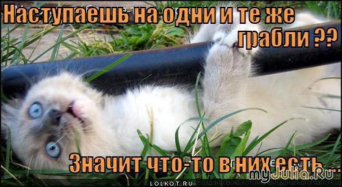http://www.myjulia.ru/data/cache/2013/04/24/1178791_7178-800x600.jpg