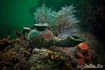 Древний Гераклион - город, потеренный под вод водой