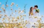 Ромашка - идея для летней свадьбы