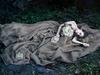 Дневники лесной ведьмы