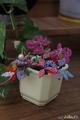 Нежные цветочки от Вареньки от дочки