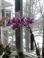 А за окном зимааа....