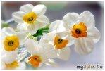 Гардеробчик обновить  требует весна