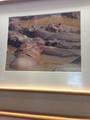 Животные, увиденные глазами Элленю Суп из бегемотов