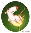 """""""Крысы - они такие... крысы!""""(с) (часть 2)"""