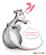 """""""Крысы - они такие... крысы!""""(с) (часть 4)"""