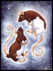 """""""Крысы - они такие... крысы!""""(с) (часть 7 и последняя)"""