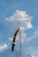 Самые невероятные ледяные чудеса природы. Часть 1