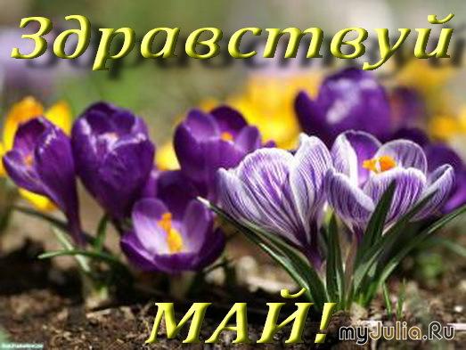 Лунный календарь на 10 мая 2017 года садовода и огородника