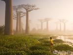 National Geographic. Лучшие снимки всех времен. Часть 2.
