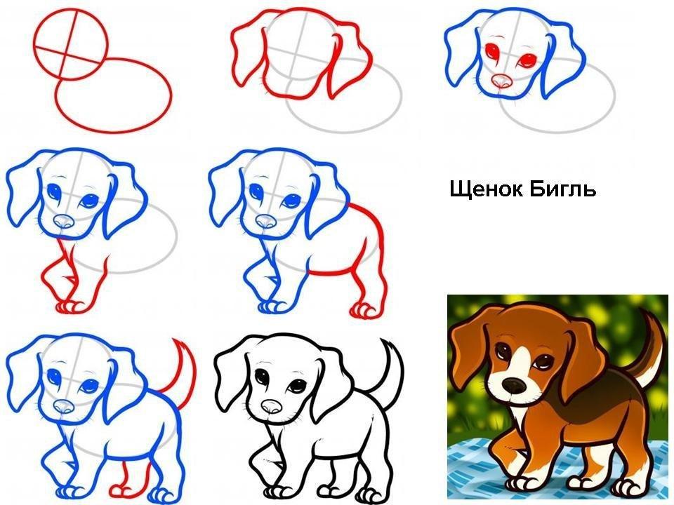 Рисовать собачку карандашом поэтапно