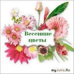 Люблю весенние цветы...