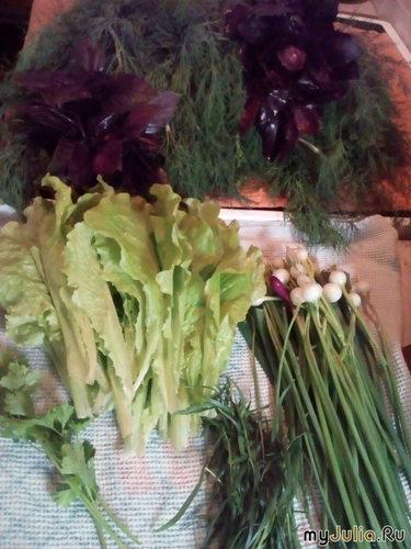 Сбор зелени для зелёных колбасок