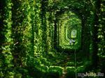 9 заброшенных красивых  мест мира
