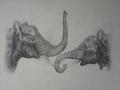 Мама со слонёнком