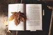 "Конкурс ""Моя любимая осенняя книга"" с ""Эксмо на MyCharm.ru"