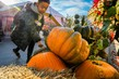 230 наименований рыбы и морепродуктов, более 120 видов сыров и более 100 видов мясных деликатесов: чем удивит гастрономический фестиваль «Золотая осень»