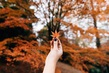 "Конкурс ""Уход за кожей в осеннее время"" с Colgate на MyCharm.ru"