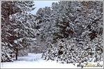 Меланхолия в крещенский снег
