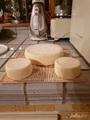 сыр домашний, 5 дней